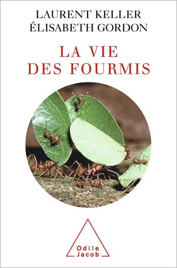 Vie des fourmis (La)