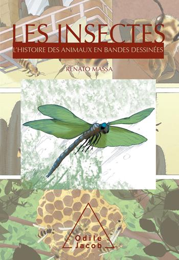 Insectes (Les) - L'Histoire des animaux en bandes dessinées