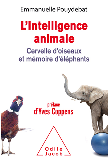 L' Intelligence animale