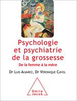 Psychologie et psychiatrie de la grossesse - De la femme à la mère